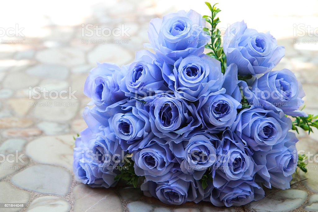 bouquet of blue rose lying on grey road outdoor stock photo