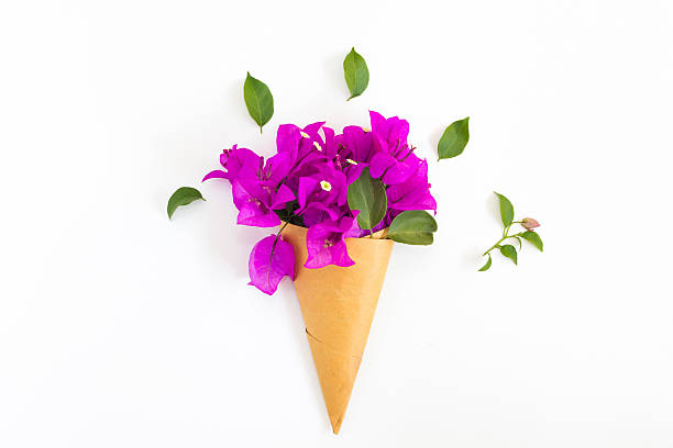 bouquet of bougainvillea paper flower on white background stock photo