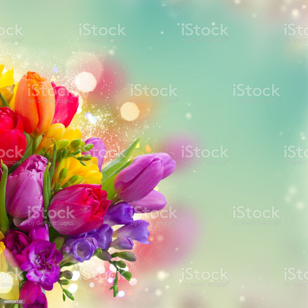Bouquet Of Bright Spring Flowers Stock Photo More Pictures Of