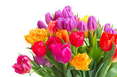bouquet of bright spring tulips