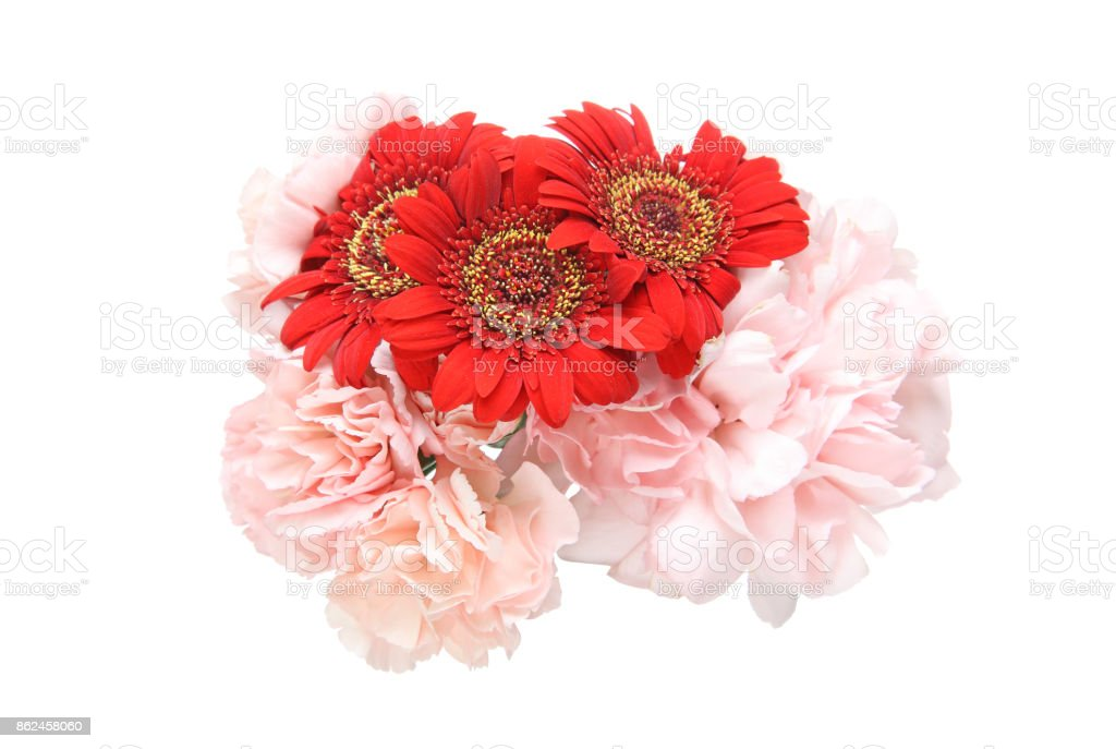 Bouquet of carnation and transvaal daisy stock photo
