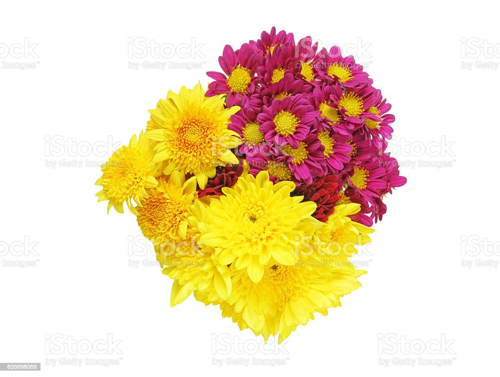 Bouquet of chrysanthemum royalty-free stock photo