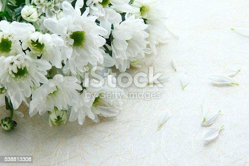 istock Bouquet of chrysanthemums 538813308