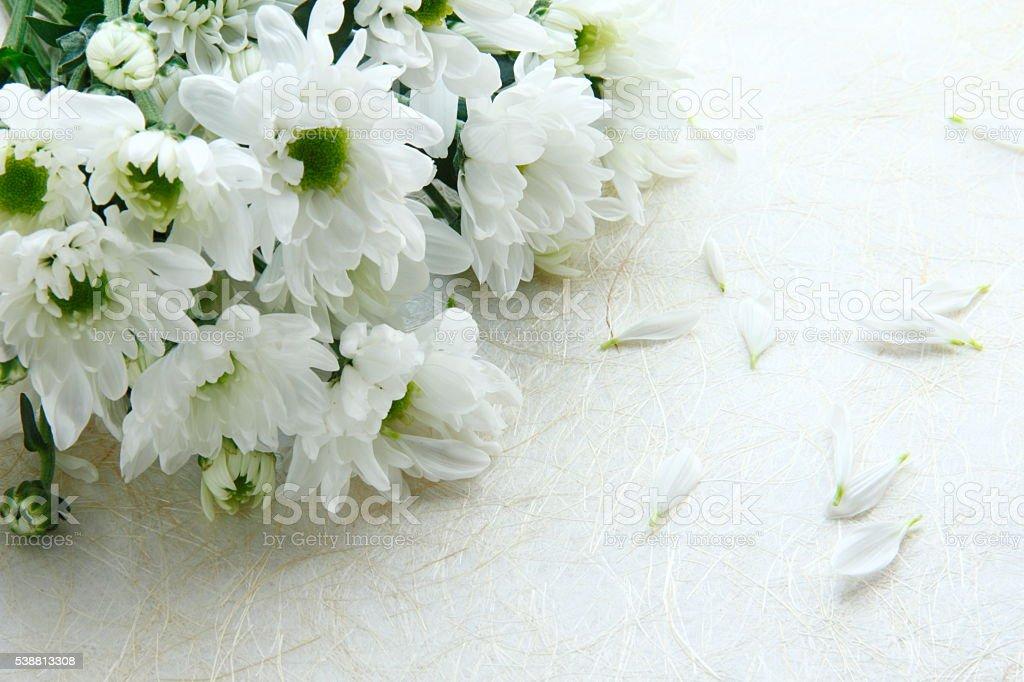 Bouquet chrysanthemums – Foto
