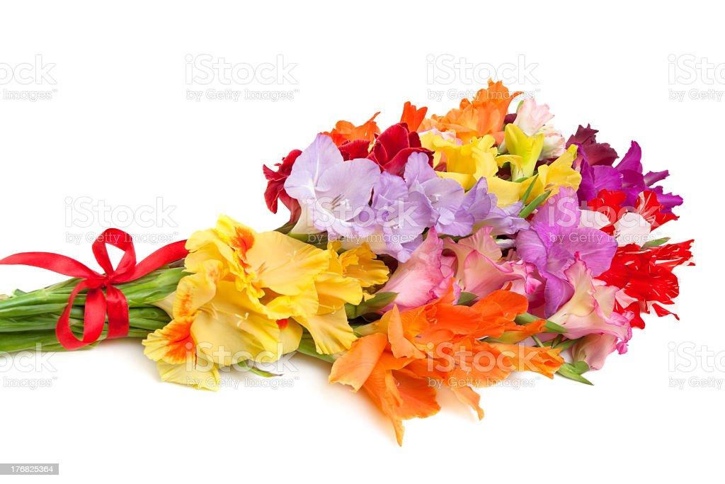 bouquet of colored gladioli stock photo