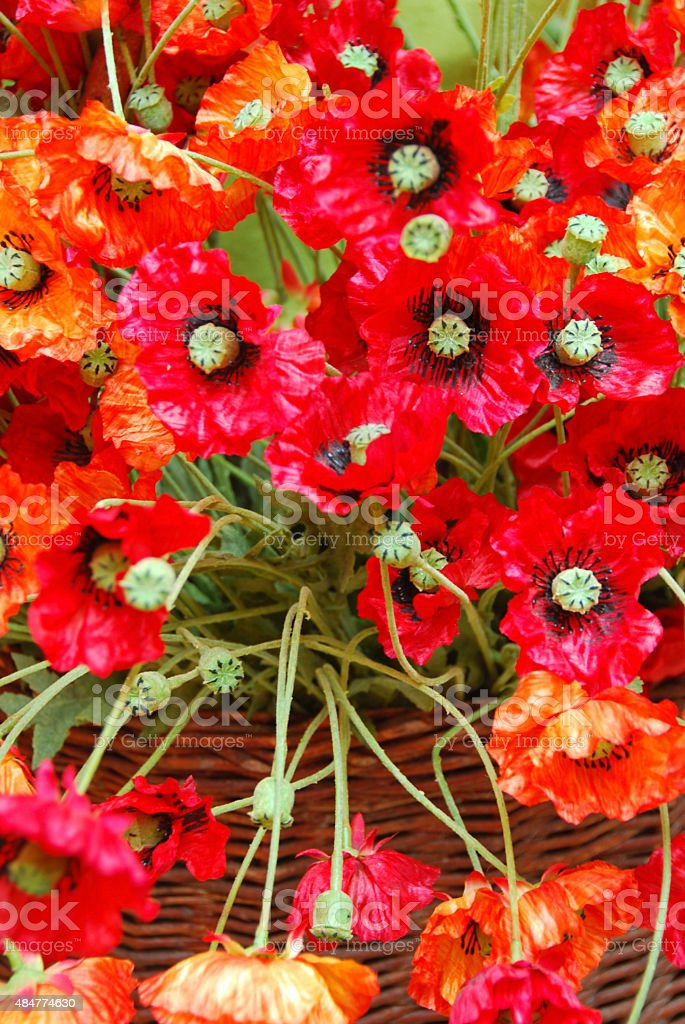 Bouquet of Corn Poppies made of silk. stock photo