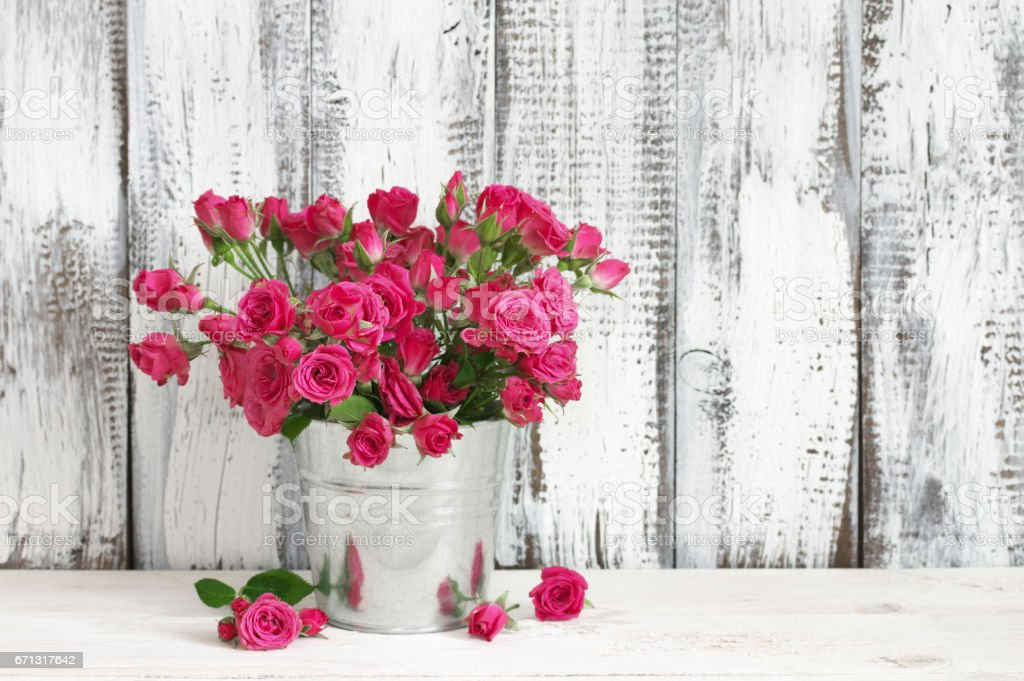Bouquet of crimson roses in bucket stock photo