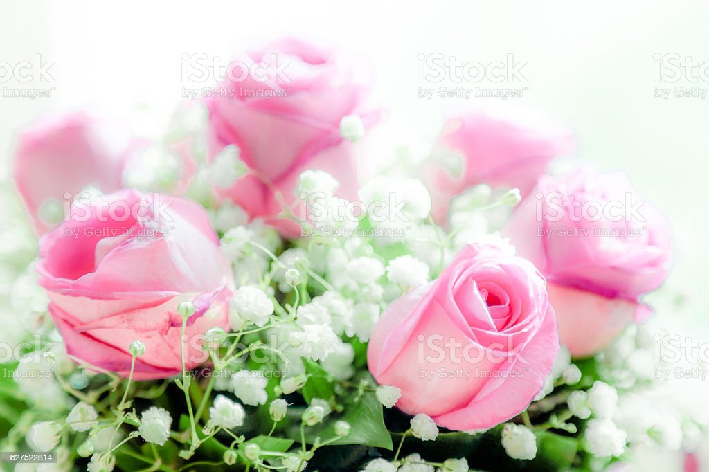 Bouquet Of Delicate Pink Roses And Small White Flowers Stock