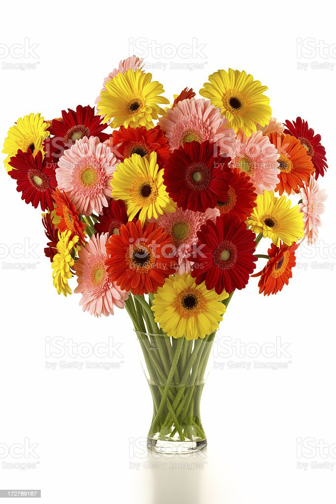 bouquet of different colored gerbera royalty-free stock photo