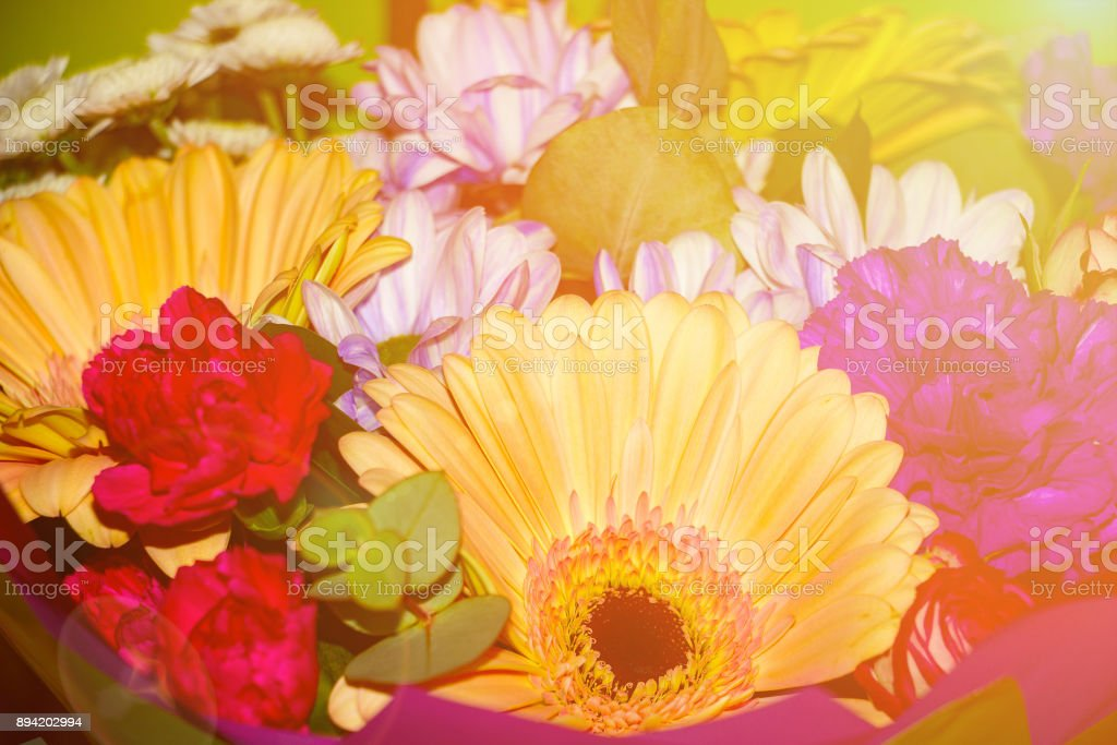 Bouquet of different flowers in sunlight stock photo