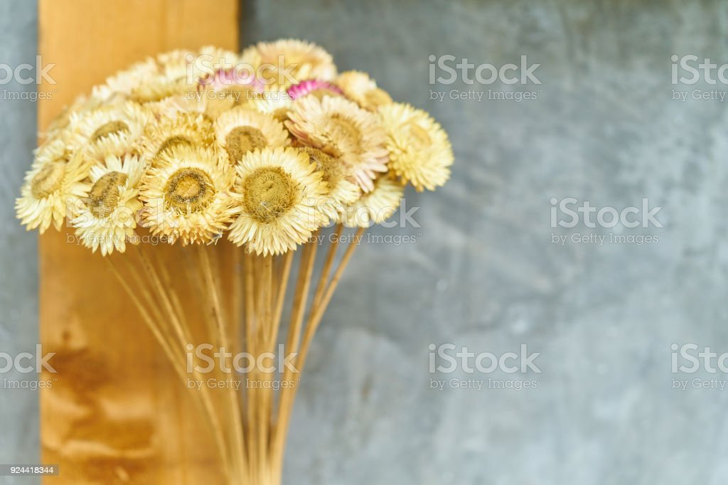 Bouquet of dried flowers on the background of a concrete wall ,...