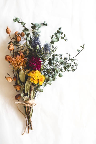 Bouquet of dried flowers Dried flowers, bouquet, interior, flat lay dried plant stock pictures, royalty-free photos & images