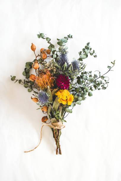 bouquet de fleurs séchées - bouquet de fleurs photos et images de collection