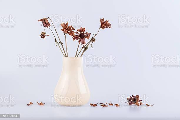 Bouquet of dry flowers in a vase isolated on white picture id531121341?b=1&k=6&m=531121341&s=612x612&h=fazzcdttkodvkiknogr d5xa8 ifmcmwziujqeksy6w=