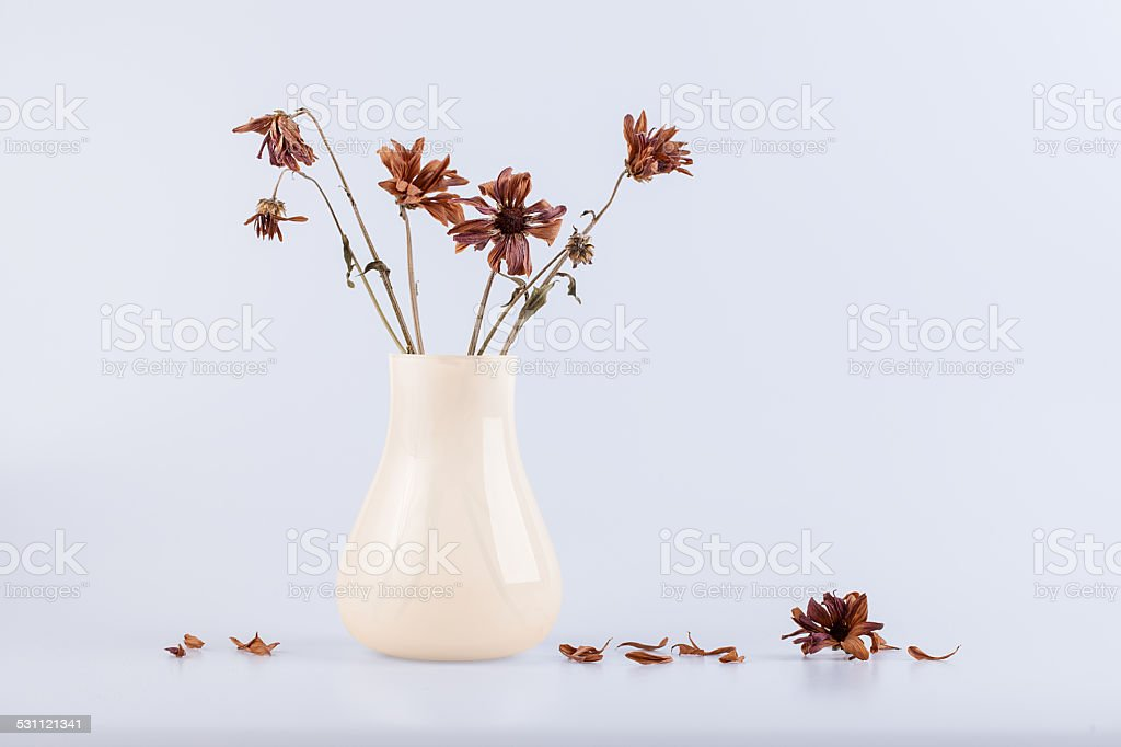 bouquet of dry flowers in a vase isolated on white stock photo