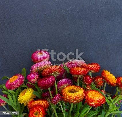 948743278istockphoto Bouquet of Everlasting flowers 534787283