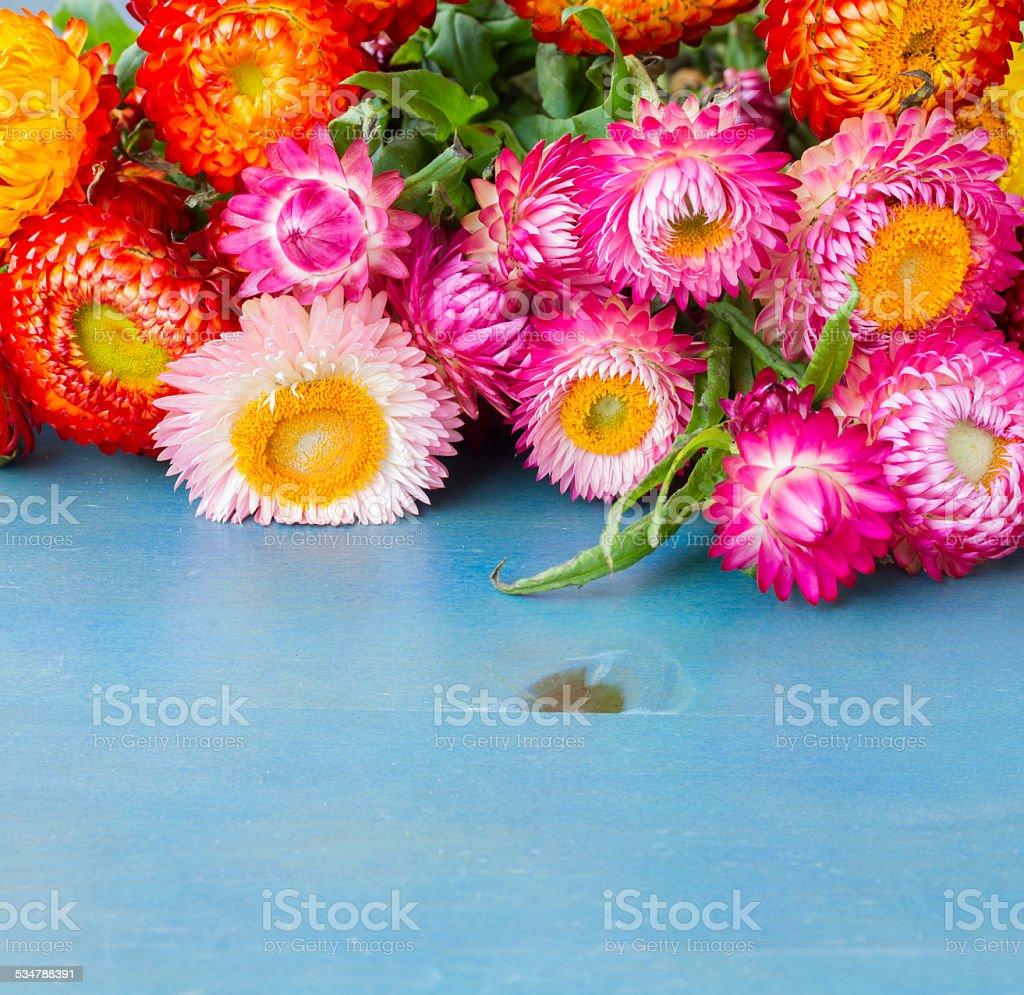 Bouquet of everlasting flowers stock photo more pictures of 2015 bouquet of everlasting flowers royalty free stock photo izmirmasajfo