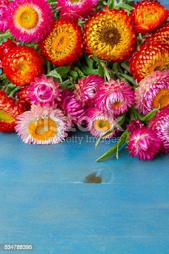 948743278istockphoto Bouquet of Everlasting flowers 534788395