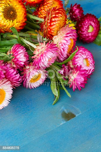 948743278istockphoto Bouquet of Everlasting flowers 534805275