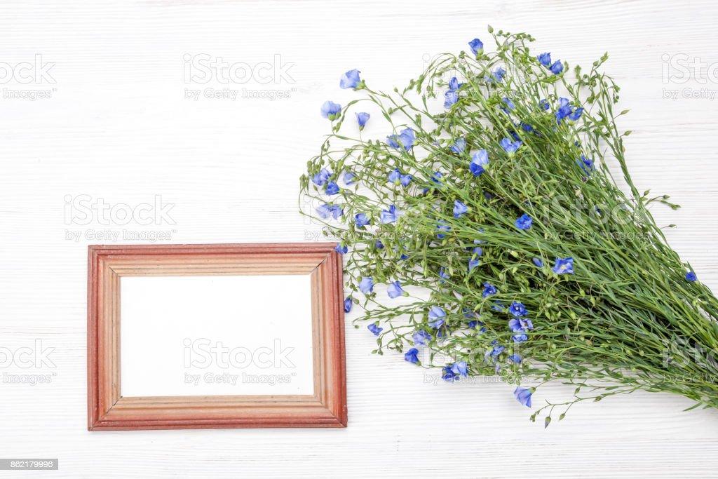 Bouquet of field flowers stock photo