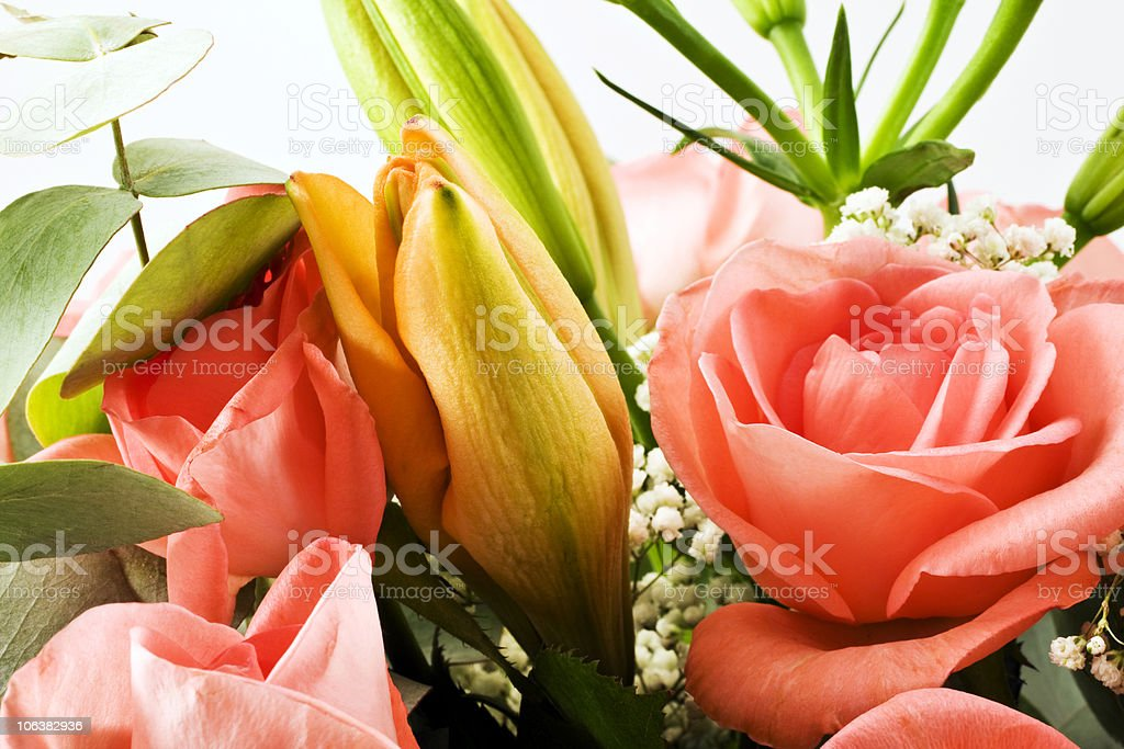 Bouquet of Flower. Color Image royalty-free stock photo
