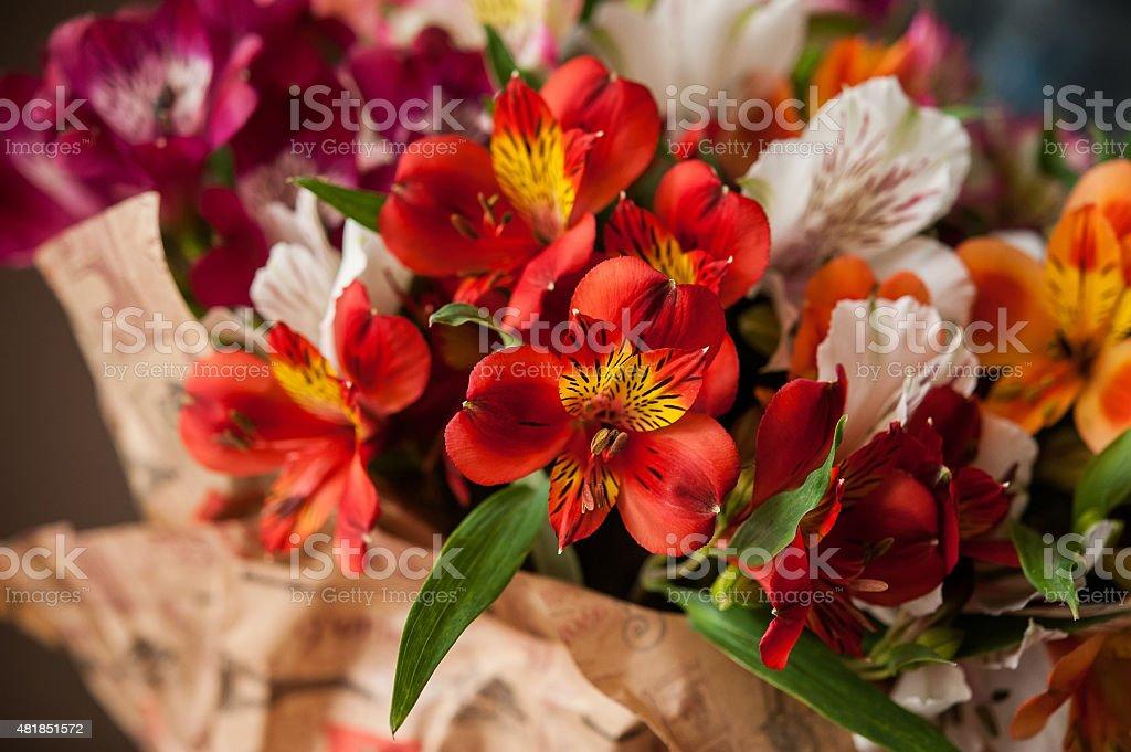 bouquet of flowers alstroemeria stock photo