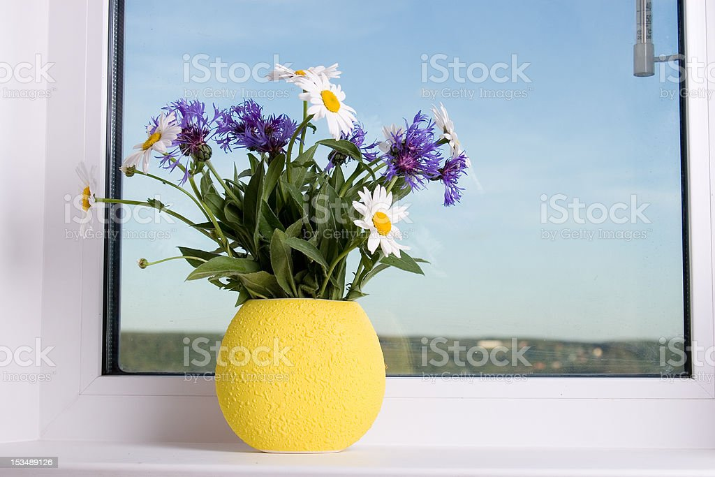 Bouquet of flowers on the window royalty-free stock photo