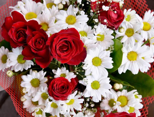 Bouquet of flowers picture id1142554473?b=1&k=6&m=1142554473&s=612x612&w=0&h=bxqjrz0boubandhwemzlhfaeu8vesnqwhwlyk kurfg=