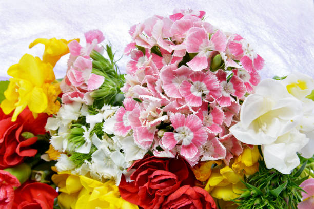 Bouquet of flowers picture id1142583355?b=1&k=6&m=1142583355&s=612x612&w=0&h=8scggaiey5wwwwtjhndusddzyiuherevd3tadnwfxvc=