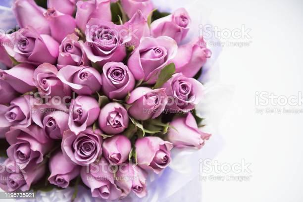 Bouquet of flowers picture id1195735921?b=1&k=6&m=1195735921&s=612x612&h=ivhwxfnvxqcewd4jpgn7np9u6ykupltxgat3m2kdtam=
