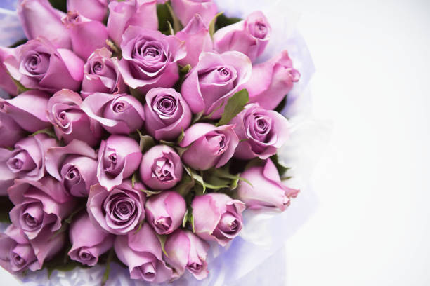 Bouquet of flowers picture id1195735921?b=1&k=6&m=1195735921&s=612x612&w=0&h=th0mqlt9y0mko8urxdysv1jo591rs7megckxk9dlx e=