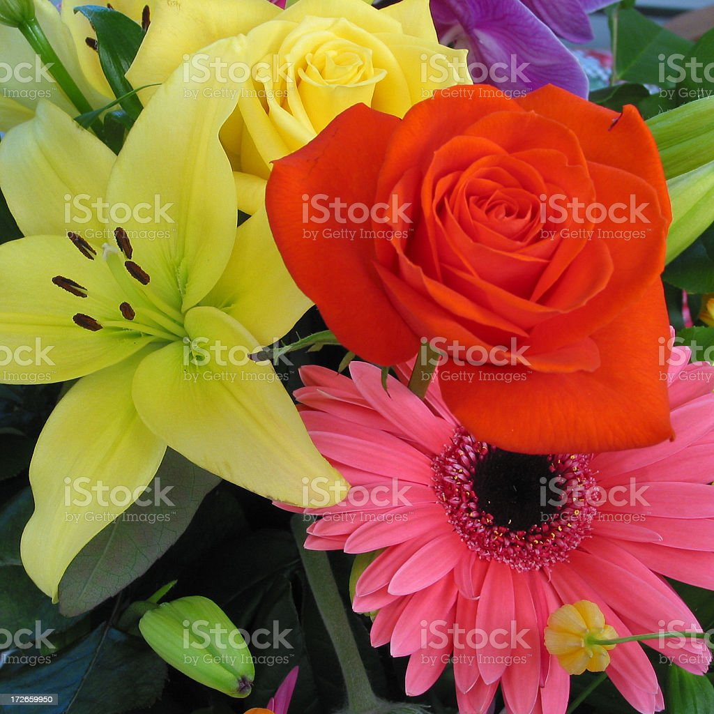 Bouquet of Flowers royalty-free stock photo