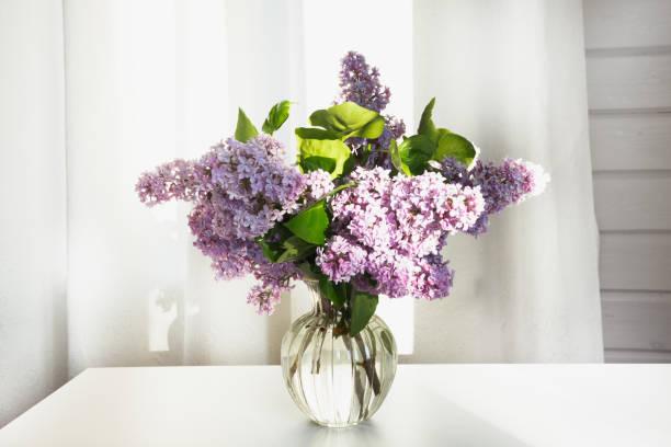 ein bouquet von frischem flieder in einer schönen glasvase auf einem weißen tisch in einem bauernhaus. - vase glas stock-fotos und bilder