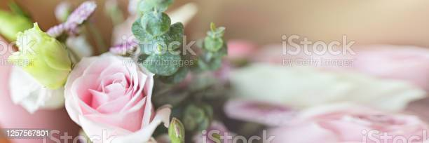 Bouquet of fresh pink flowers close up holiday background horizontal picture id1257567801?b=1&k=6&m=1257567801&s=612x612&h=diz75sejefxdbqom5nili17w7vmi3mosd zpwisdsb8=