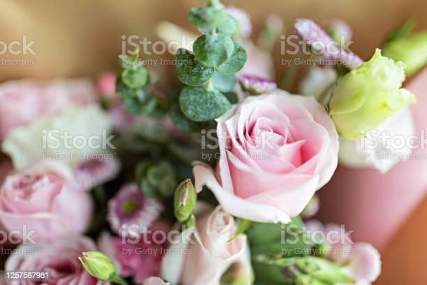 Bouquet of fresh pink flowers close up holiday background picture id1257567981?b=1&k=6&m=1257567981&s=612x612&h= hpf ydunysdwxrqecj58khfojugys ontm grojiyu=