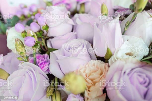 Bouquet of fresh purple flowers close up holiday background picture id1257568039?b=1&k=6&m=1257568039&s=612x612&h=uztpimuq7o3q8qbzf8lb2c2dpl4fbwcnp34jo9yfare=
