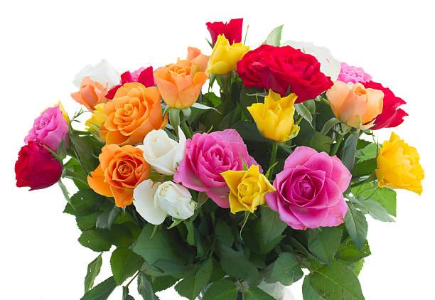 Bouquet of fresh roses picture id484743338?b=1&k=6&m=484743338&s=612x612&w=0&h=kjaryh4tyfxlkgy0yowlwrrpsvv9 rzimfblxuegj2s=