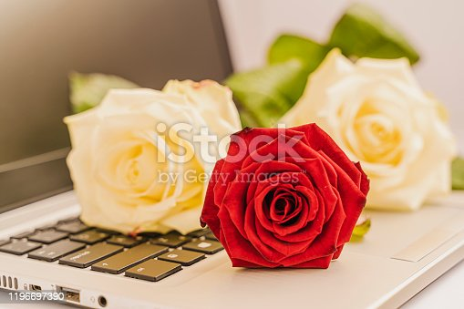 Bouquet of fresh white and red roses on the laptop keyboard on slightly pink background, Valentine concept.  А bit of romance in everyday life. Horizontal image and closeup