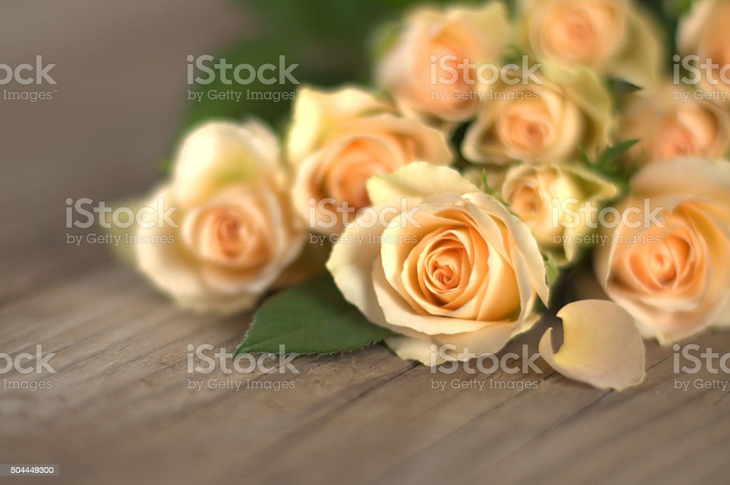 Bouquet of fresh yellow roses stock photo