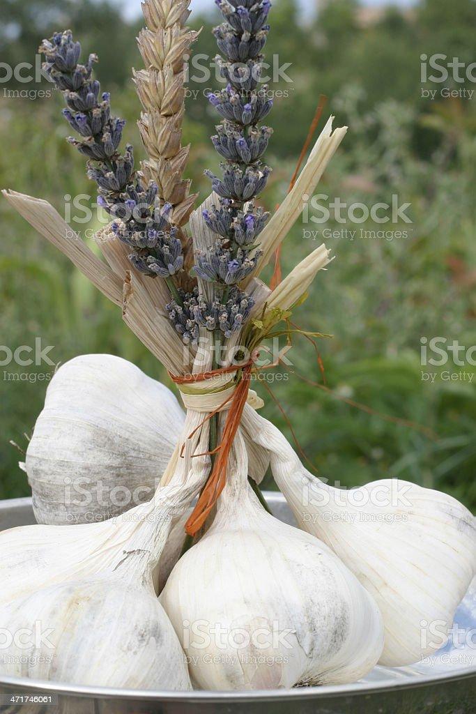 Bouquet d'Ail de provence stock photo