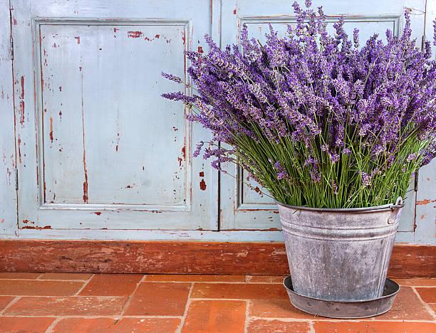 bouquet di lavanda in un ambiente rustico - colore lavanda foto e immagini stock