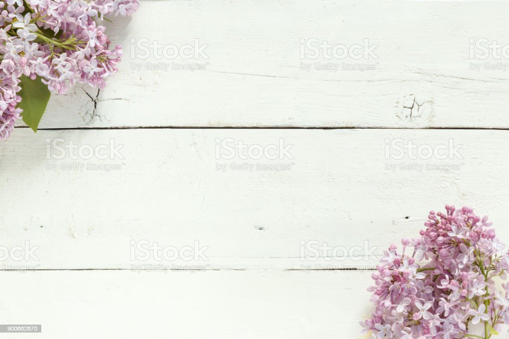 Bouquet of lilac flowers on white wooden background. Copy space. stock photo