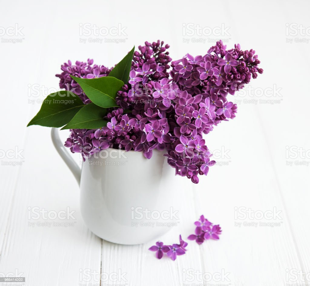 Bouquet of lilac flowers zbiór zdjęć royalty-free