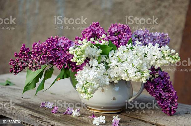 Photo of Bouquet of lilac in a vase