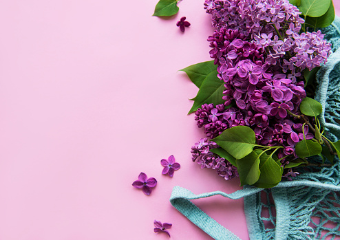 Bouquet of lilac in reusable shopping eco mesh bag on pink background. Concept no plastic, zero waste. Copy space Top view Template for greeting card, postcard, invitation.