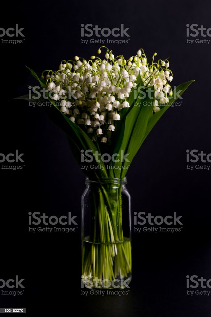 Bouquet of lilies of the valley in a jar with water on the black...