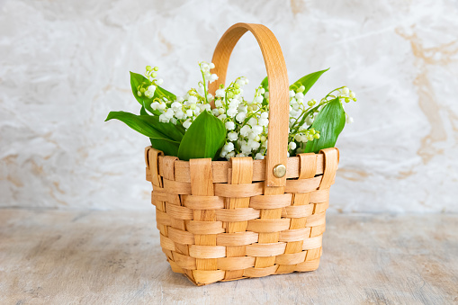 Bouquet of Lilies of the Valley in a basket isolated on wooden background