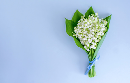 A bouquet of lilies of the valley tied with a blue ribbon on a blue background. Copy space, top view/