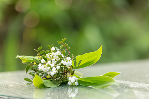 Bouquet of lily of the valley for the labor day, outdoor