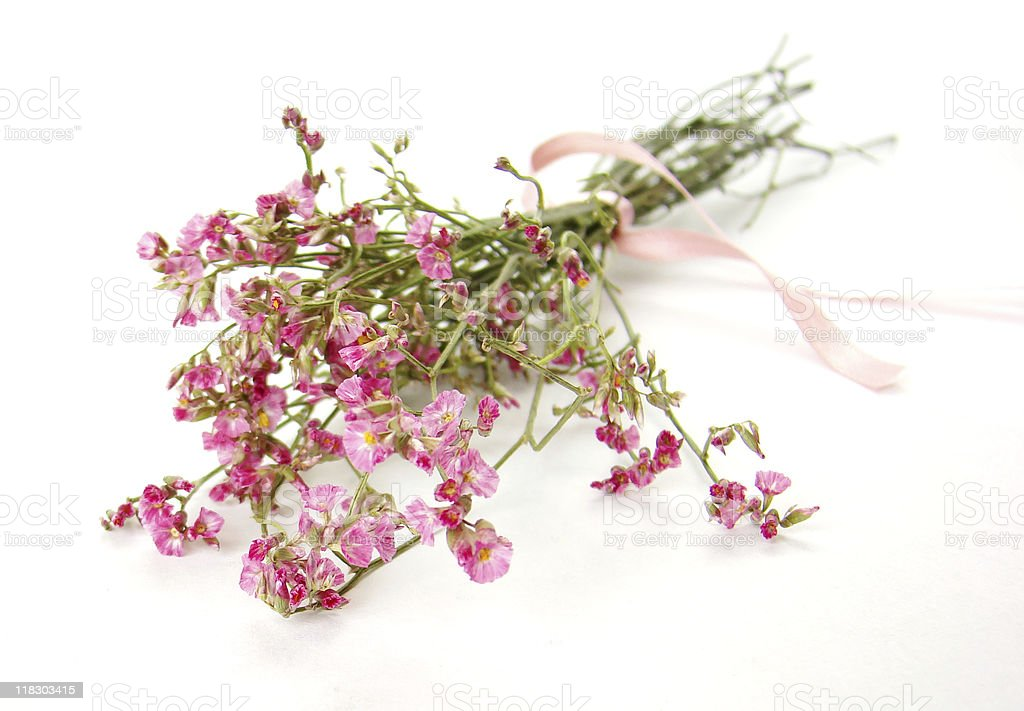 Bouquet of little pink flowers royalty-free stock photo